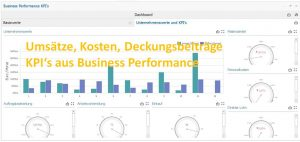 Dashboards in Business Performance